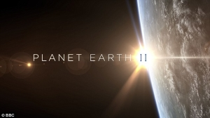 3A5CA99900000578-3940762-Planet_Earth_II_may_be_the_most_watched_TV_programme_on_British_-a-33_1479277295953